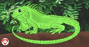 iguane da colorare