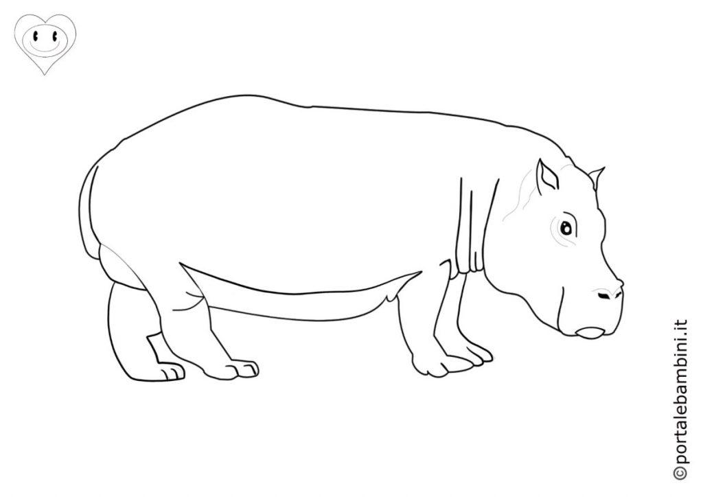 ippopotami da colorare 3