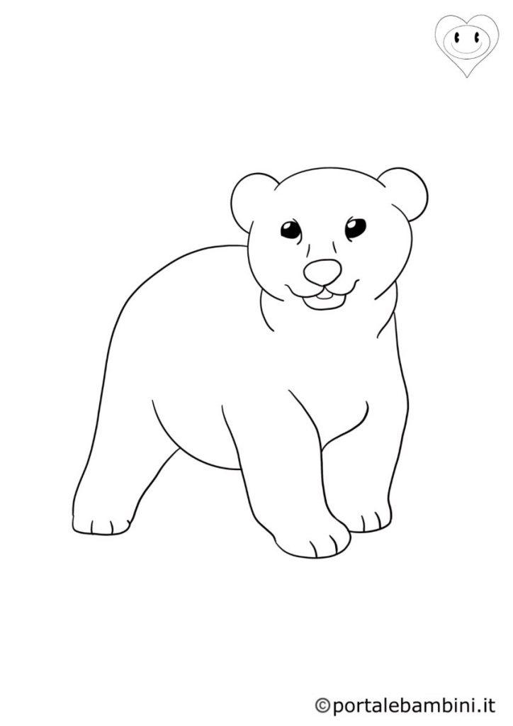 orsi da colorare 2