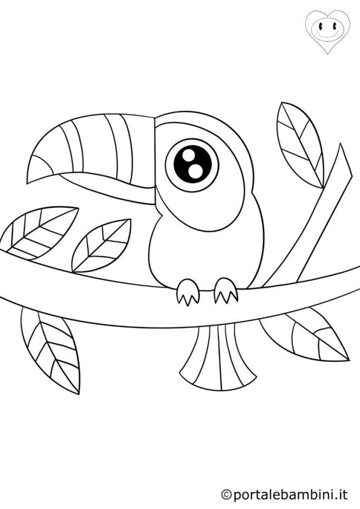 tucano da colorare 2